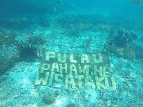 Keindahan Bawah Laut Lampung Selatan